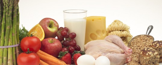 The Critical Role of a Nutritionist in Helping Your Autistic Child
